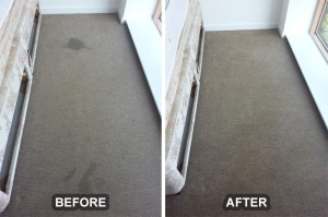 Cleaning Services Photo Gallery - Before and After